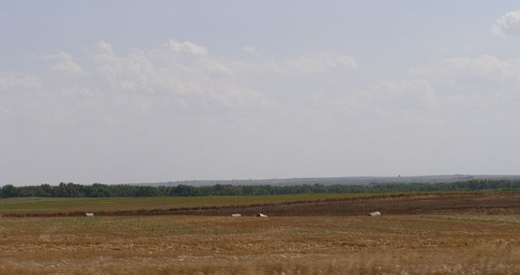640px-Western Kansas-High_Plains_Nicodemus