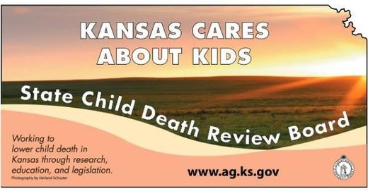Child Death Review Board