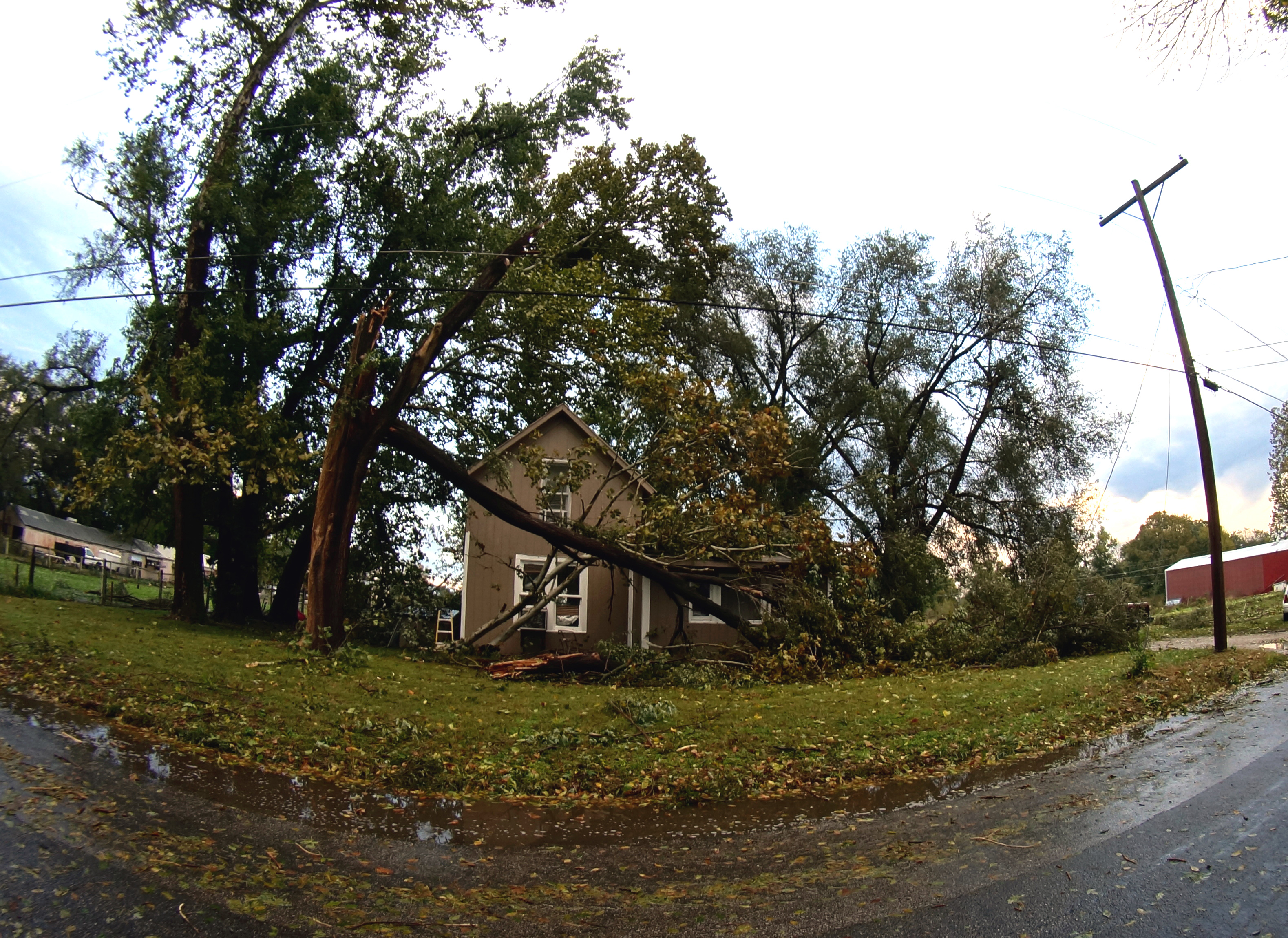 A large tree fell dangerously close to this house in North Lawrence. (Photo by Danny Mantyla)