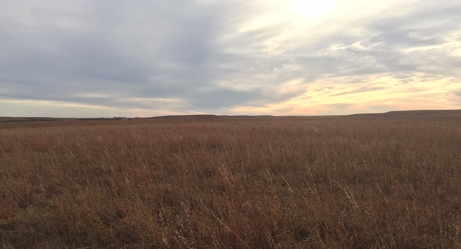 Section of the Flint Hills in Chase County, Kansas (Photo by J. Schafer)