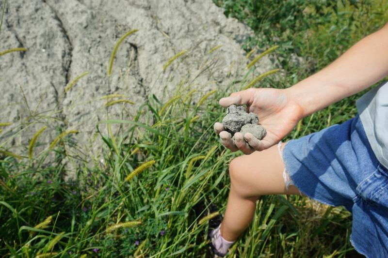 Gavi Welbel holds crushed basalt rock in her hand on her family's farm in eastern Illinois. The rock could replace limestone and help reduce agricultural emissions of carbon into the atmosphere.  (Photo by Jonathan Ahl / Harvest Public Media)