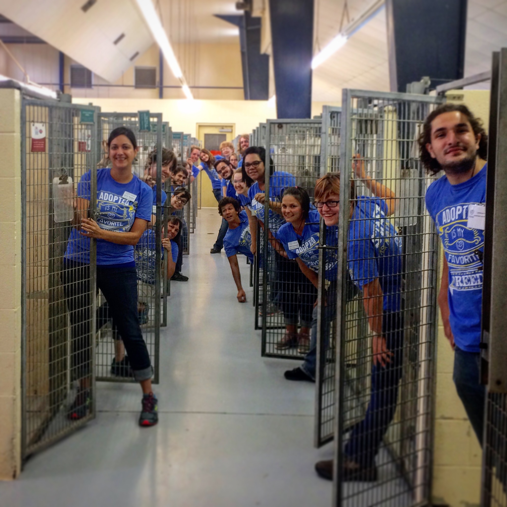 Workers at the Lawrence Humane Society shelter.