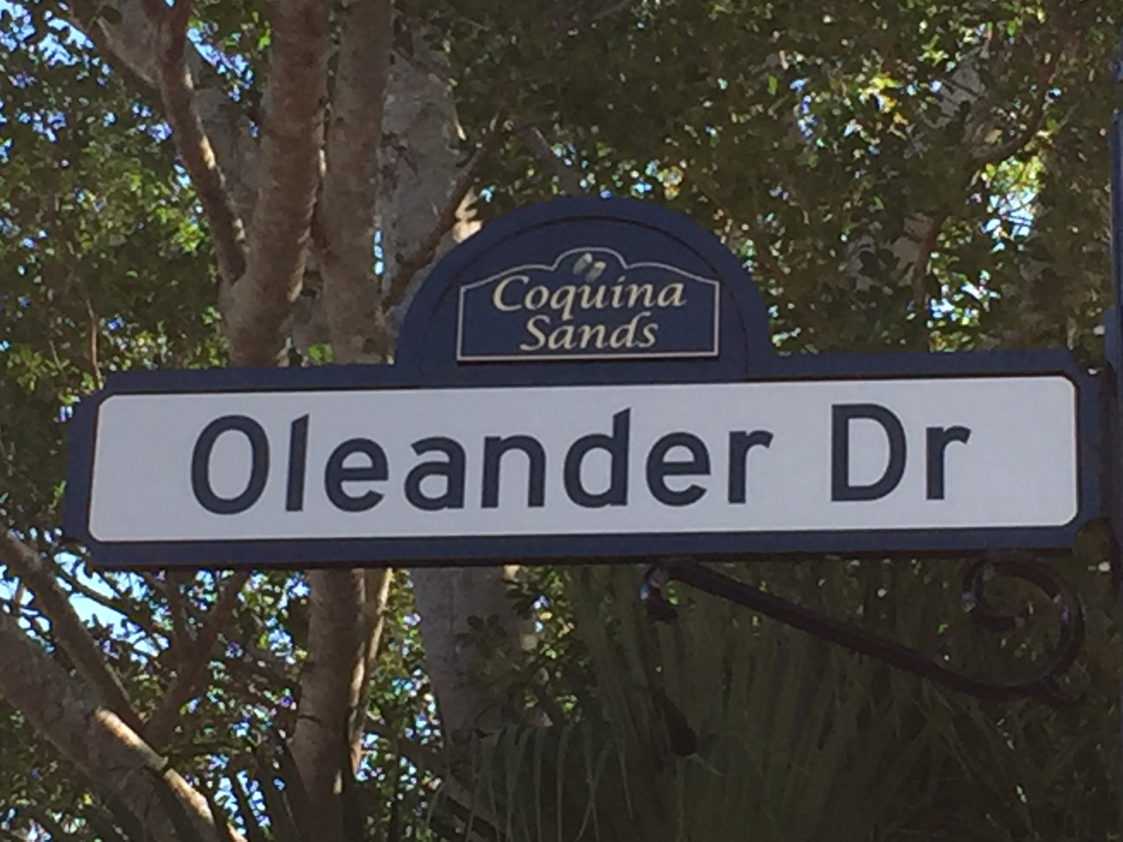 This is Oleander Drive, which should be a street in Here, Kansas, but is actually a street in Naples, Florida. (Photo by J. Schafer)