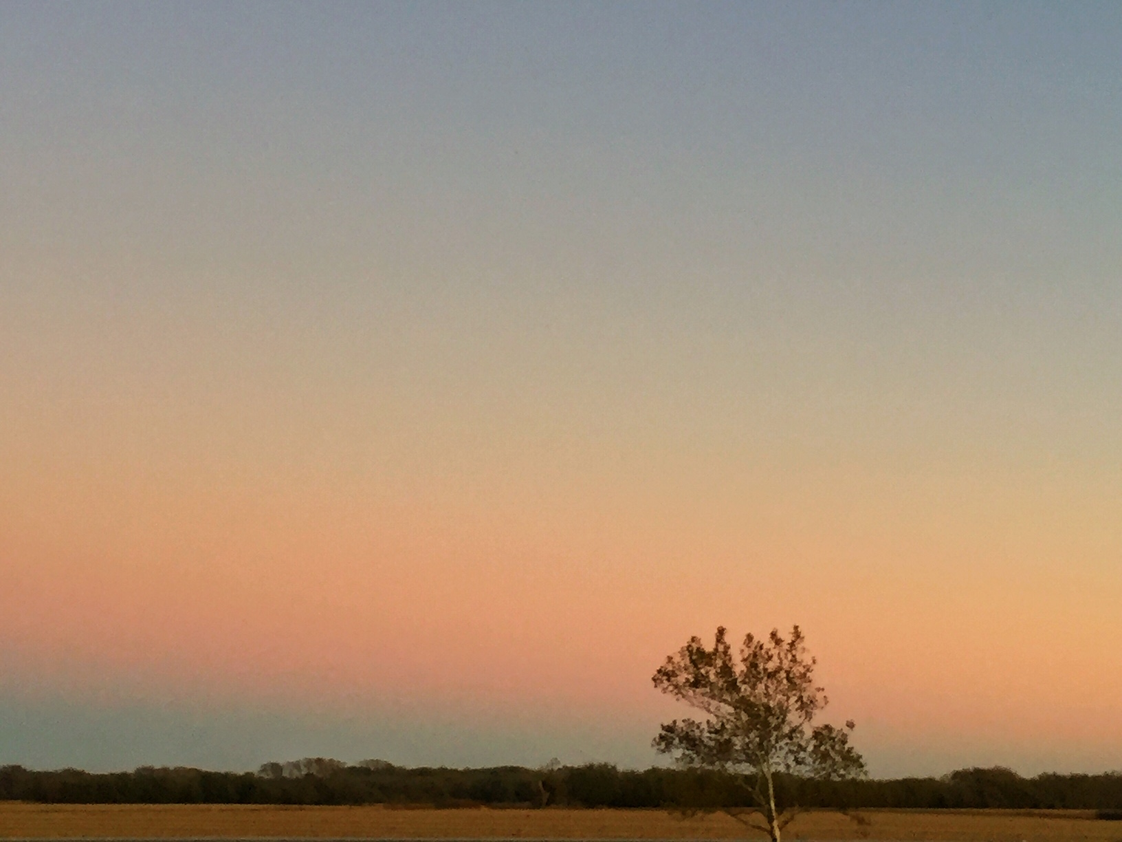 Not a sunset, per se, but a simple Kansas skyline to the east AT sunset, in the Flint Hills.