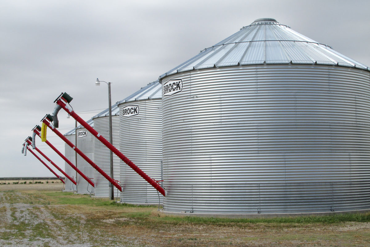 Storage tanks for holding corn, rye and triticale seeds at the Ehmke Seed Company in rural Lane County, Kan. (Photo by David Guth)