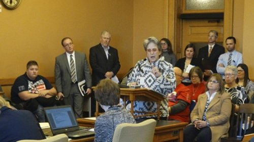 Lobbyist Cindy Luxem tells a Kansas House committee that the nursing home industry is on the brink of financial collapse. (Photo credit: Peter Hancock, Lawrence Journal World)