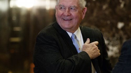 Former Georgia Governor Sonny Perdue is President Trump's pick to head the U.S. Department of Agriculture. (Photo by Evan Vucci / AP)