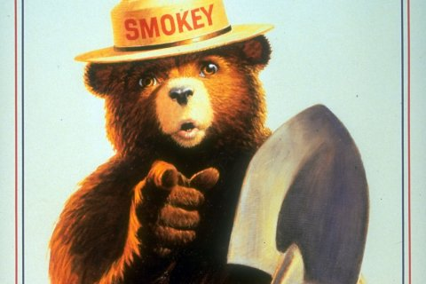 Smokey Bear, U.S. Forest Service *