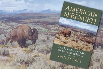 American Serengeti, by historian Dan Flores, focuses on a time when large mammals roamed the Great Plains in massive numbers.
