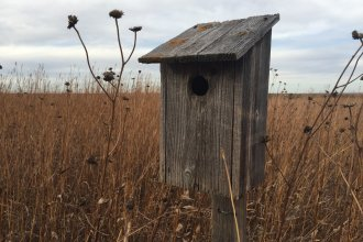 Empty bird house in the Flint Hills. (Photo by J. Schafer)