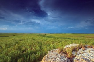 Tallgrass Prairie Preserve near Pawhuska, Oklahoma (Photo by Mike Fuhr, The Nature Conservancy)