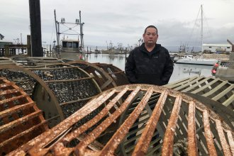 Kenichi Wiegardt is a fifth-generation oyster grower. He's worried he'll be the last in his family if the coronavirus doesn't get better and trade doesn't pick up again to China and other Pacific Rim countries. Exports there make up the majority of his fresh-oyster packing business.