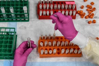 A lab technician sorts blood samples for a COVID-19 vaccination study at the Research Centers of America in Hollywood, Fla., on Aug. 13.