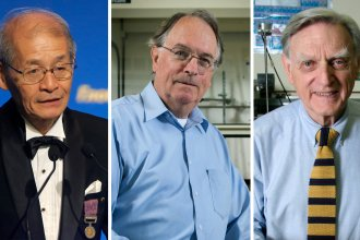 The 2019 Nobel Prize in chemistry has been awarded to Akira Yoshino (left), M. Stanley Whittingham and John B. Goodenough for the development of lithium-ion batteries.