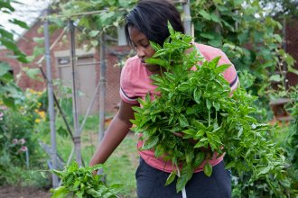 Nychele Williams, 15, picks basil from the garden at Eastern Senior High School in Washington, D.C.