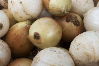 Ousted Australian Prime Minister Tony Abbott's fondness for eating raw onions has inspired a social media campaign: #Putoutyouronions.