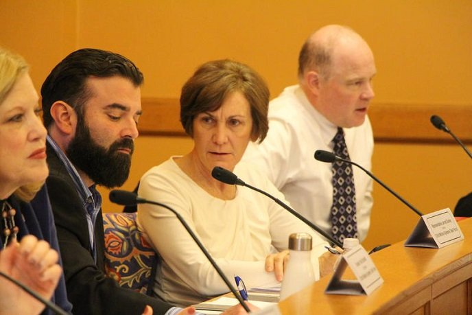 Republican state Senator Barbara Bollier has been removed as vice chair of the Public Health and Welfare Committee for endorsing Democrats in state and federal races.