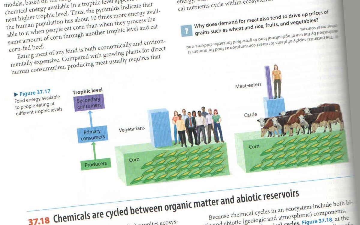 A graphic from a new biology textbook that some take issue with, including biologist John Richard Schrock (Photo by Professor John Richard Schrock)