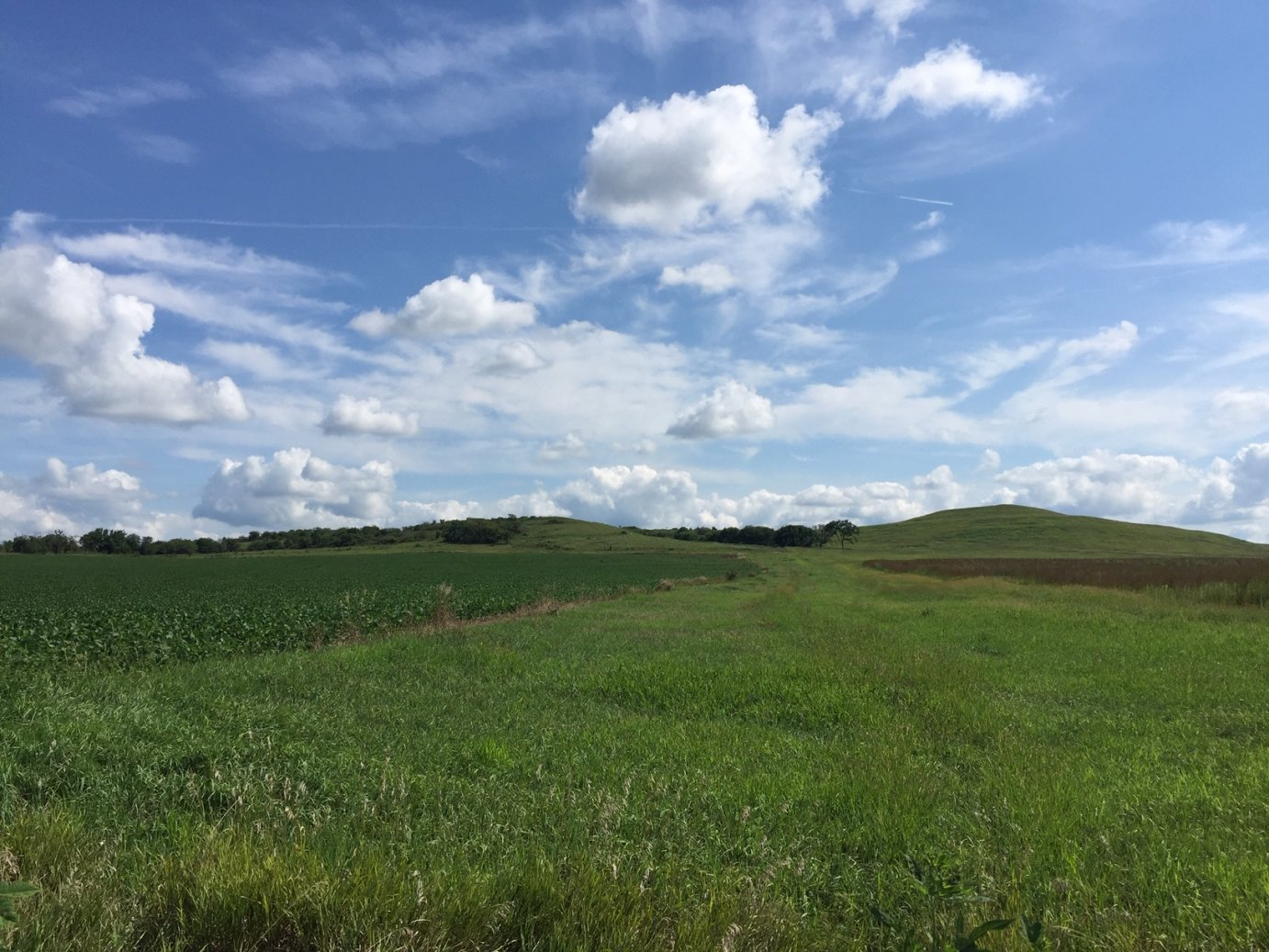 Flint Hills, south of Wamego (Photo by J. Schafer)
