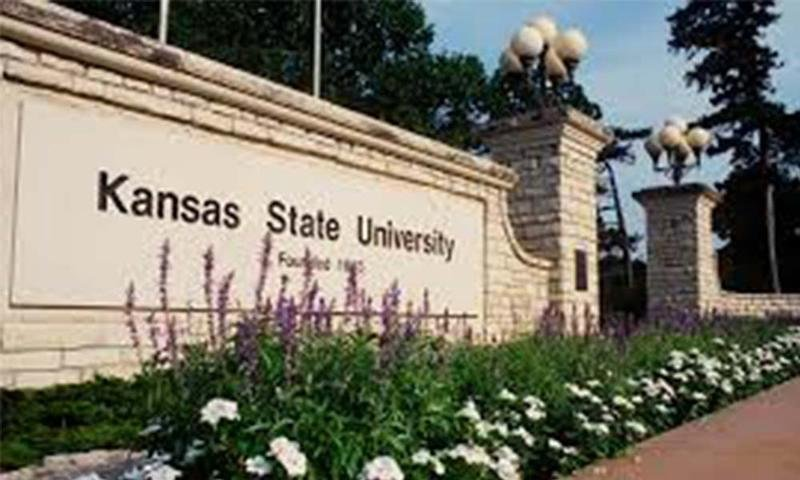 The College Choice website says KSU excels in its campus safety and in its counseling and health care programs. (Photo:KSU)