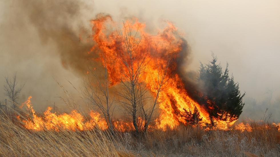 A tree erupts in flames in this grass fire near Lake City, Kansas, in March, 2016.  (Photo by Travis Morisse, The Hutchinson News, via AP)