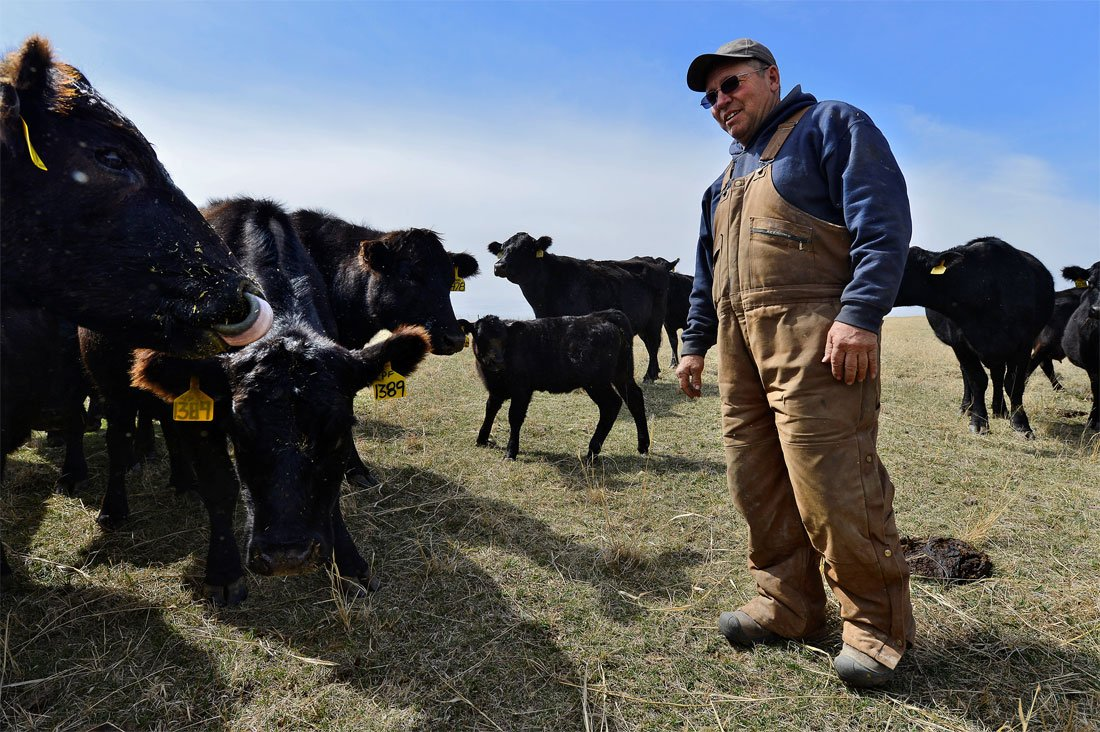 """Kansas rancher David Pfrang is one of thousands of small beef producers challenging the oversight of the multimillion dollar """"beef checkoff"""" fund, which is used to promote the beef industry. (Photo Courtesy of Jill Toyoshiba/The Kansas City Star)"""