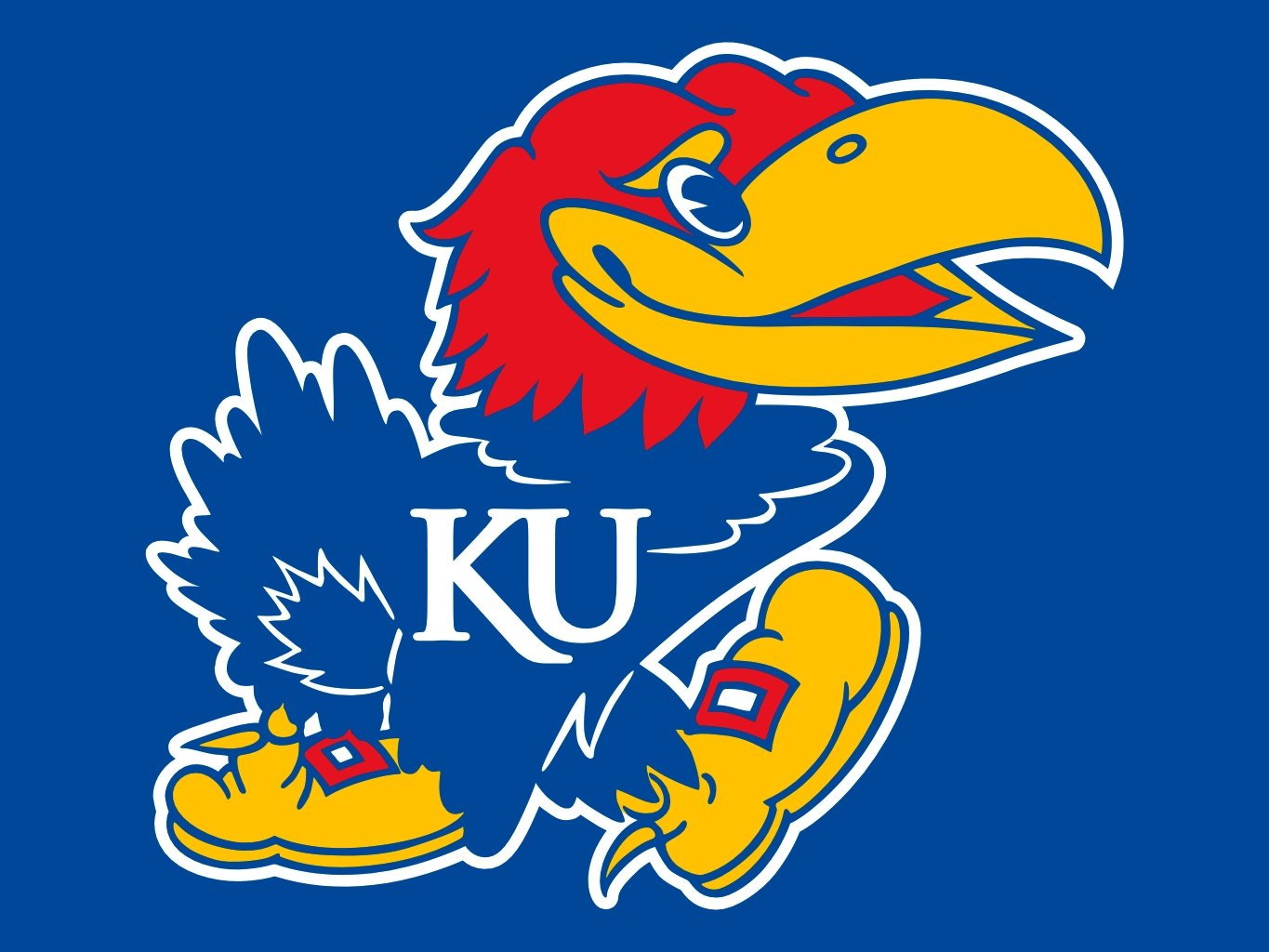 The Kansas Jayhawk
