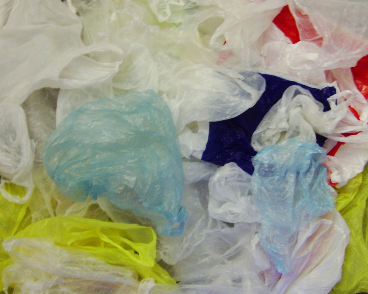 Typical plastic bags