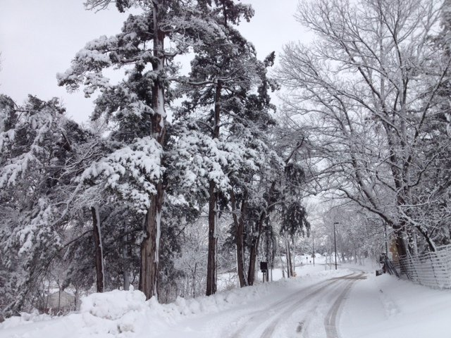 File photo of a snowy road near Kansas Public Radio in Lawrence. (File photo by J. Schafer)