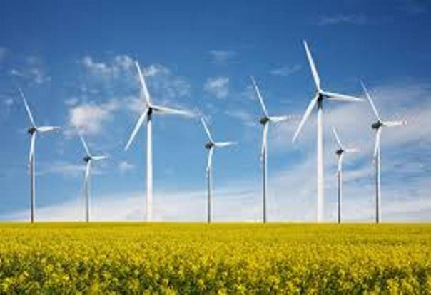 The Nature Conservancy says the tool helps wind energy developers avoid unnecessary risks.